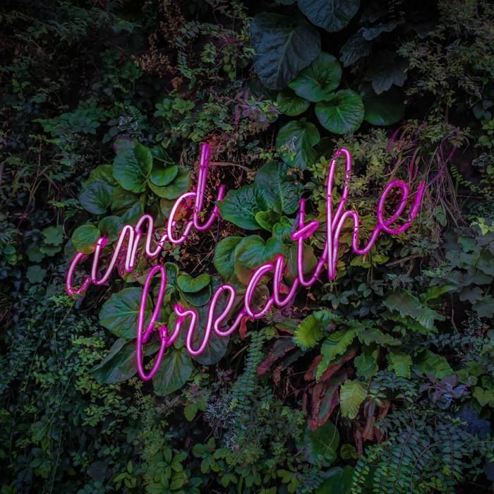 Amplitud de la respiración