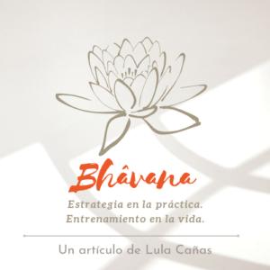 BHÂVANA: Estrategia en la práctica, Entrenamiento para la vida.